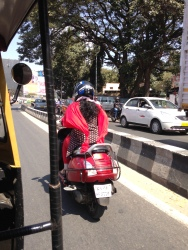 I loved seeing this women in her flowing sari and scarf driving herself.